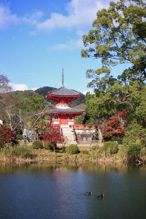 大覚寺4 (468x700).jpg