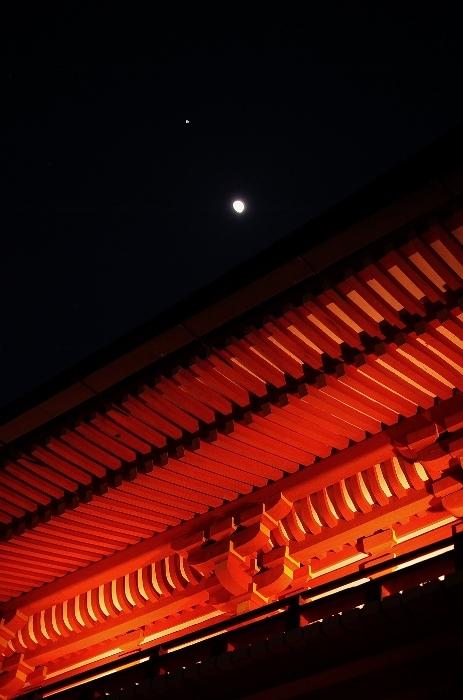 春日大社9 (463x700).jpg