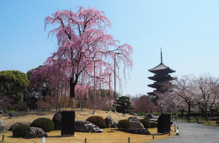 東寺1 (700x457).jpg
