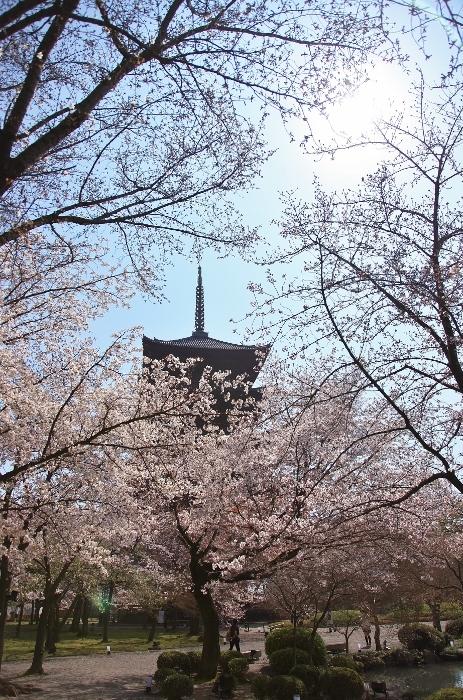 東寺3 (463x700).jpg