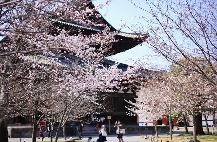 東寺6 (700x458).jpg