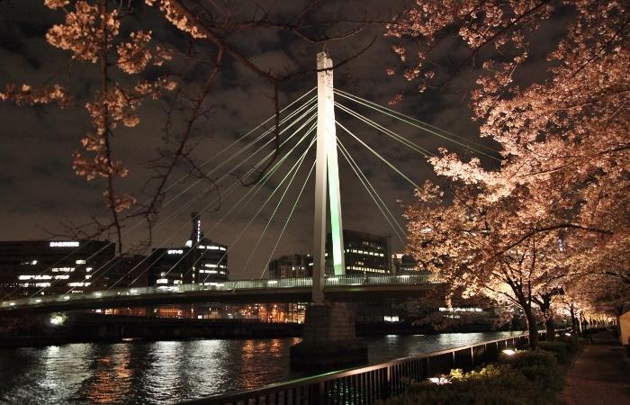 桜ノ宮5 (700x450).jpg