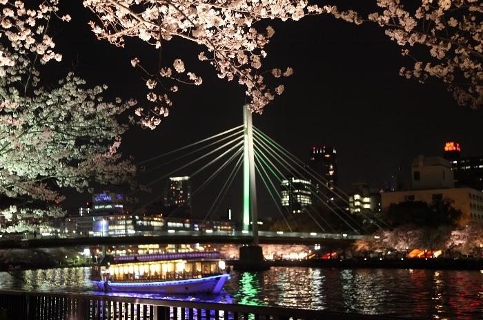 桜ノ宮5 (700x463).jpg