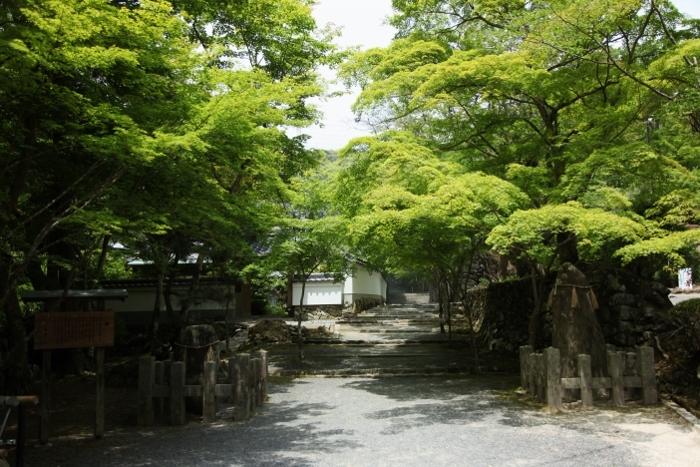 神峯山寺6 (700x467).jpg