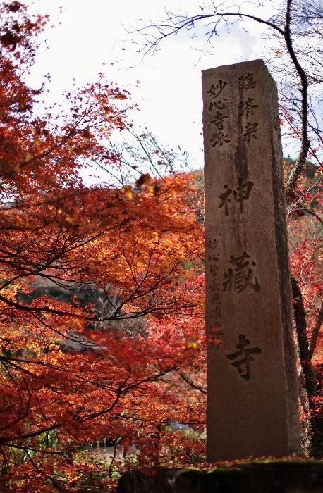 神蔵寺2 (458x700).jpg