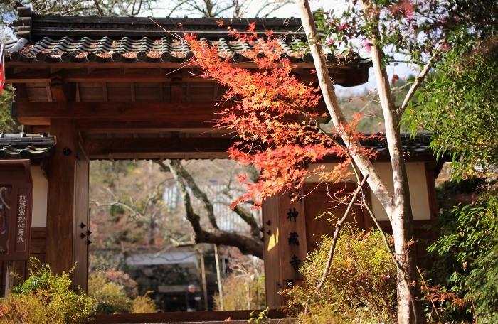 神蔵寺3 (700x456).jpg