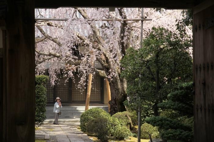 西迎寺3 (700x466).jpg