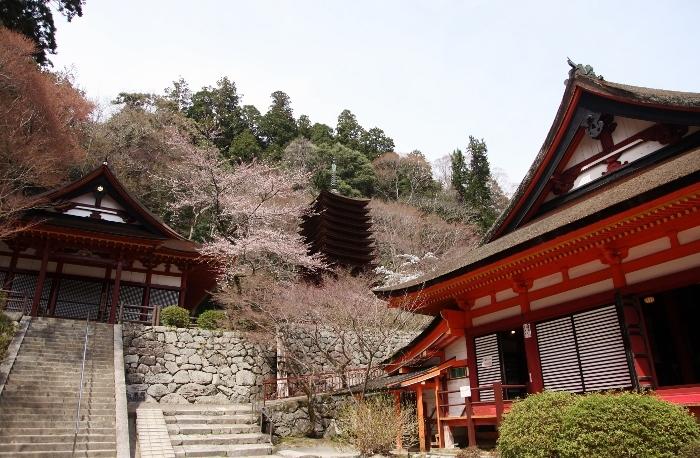 談山神社7 (700x458).jpg