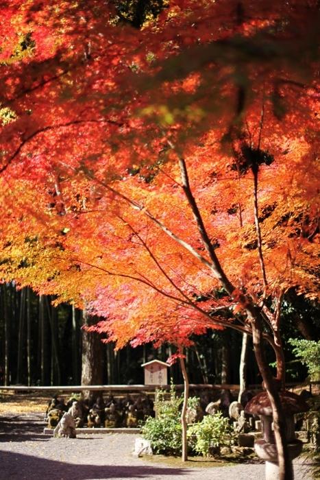 赤山禅院1 (467x700).jpg