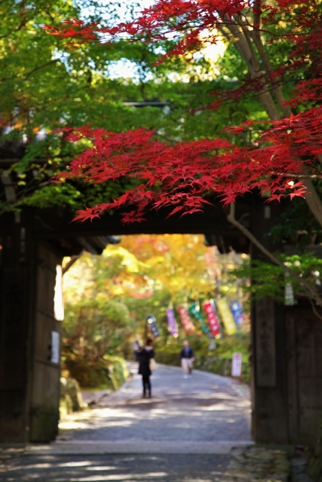 赤山禅院6 (467x700).jpg