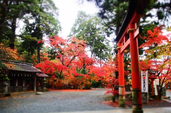 鍬山神社10 (700x462).jpg