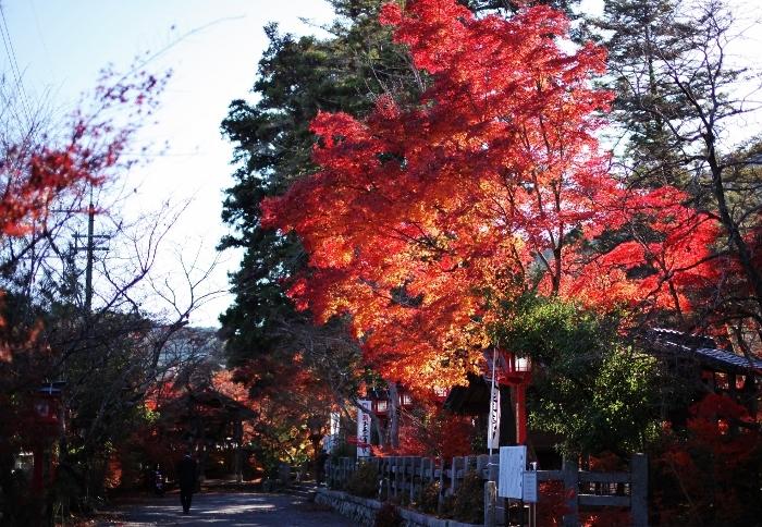 鍬山神社6 (700x484).jpg
