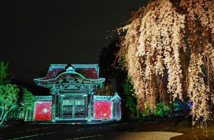 高台寺3 (700x457) (2).jpg