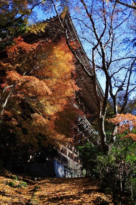圓教寺4 (467x700).jpg