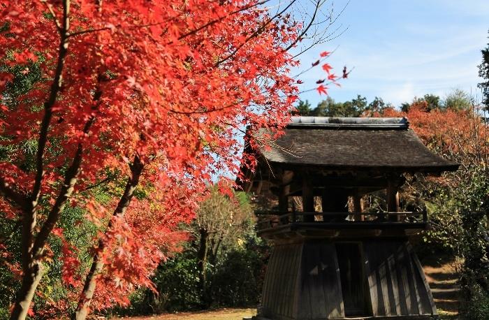 正伝寺2 (700x458).jpg